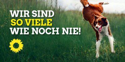 """Ein Hund macht einen Freudensprung im hohen Gras, dazu der Text """"Wir sind so viele wie noch nie!"""" und das grüne Sonnenblumenlogo"""