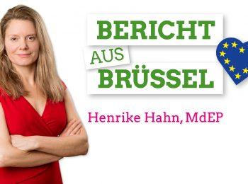 Bericht aus Brüssel - Henrike Hahn