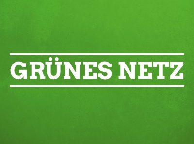 Grünes Netz