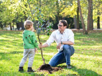 Martin Heilig und ein kleiner Junge sind auf einer Wiese und pflanzen zusammen einen Baum ein.