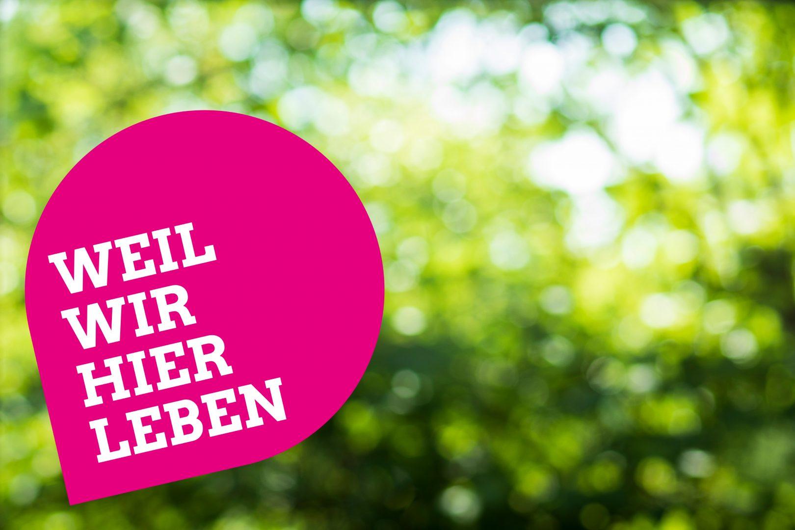 """Grüner Blätterhintergrund mit dem Schriftzug """"Weil wir hier leben"""""""