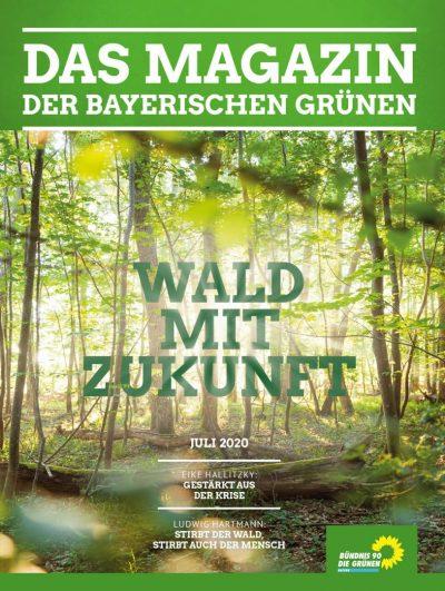 Wald mit Zukunft: Titelseite des Magazins der bayerischen Grünen Nr. 1/2020 (Ansicht eines sonnendurchfluteten, naturnahen Waldes)