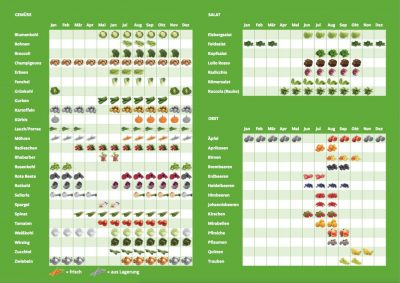 saisonkalender_obst und gemüse_Grüne NRW